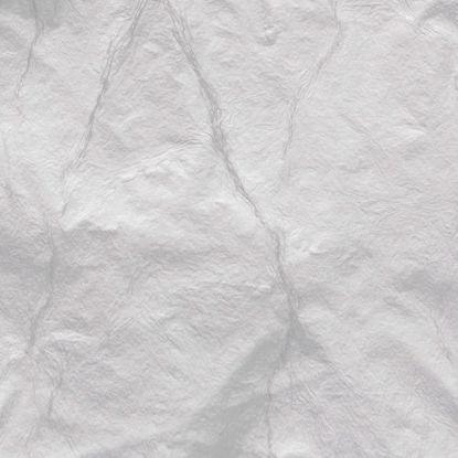 Immagine di Argento falso in foglia doppio spessore cm 16x16