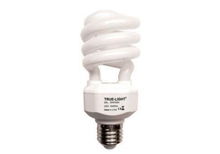Immagine di Lampadina a luce naturale TRUE-LIGHT® da 100W attacco E27