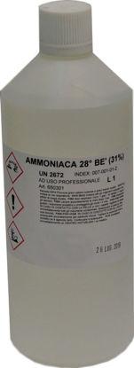 Immagine di Ammoniaca 28 Be 30%