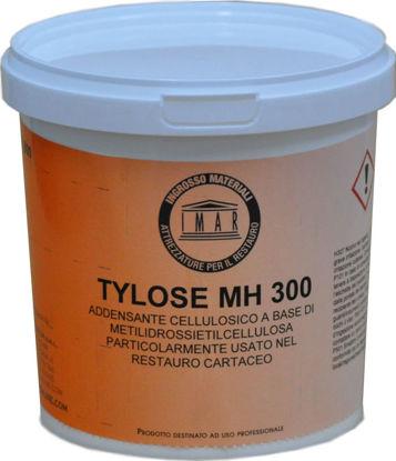 Immagine di Tylose MH 300 Metil Idrossi Etil Cellulosa Gr. 500