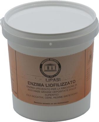 Immagine di Enzima Lipasi Liofilizzata conf. GR. 250