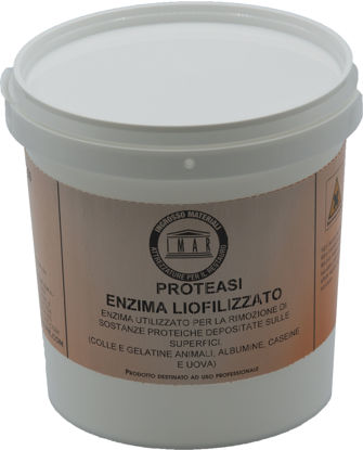 Immagine di Enzima Proteasi liofilizzata conf. Gr. 100