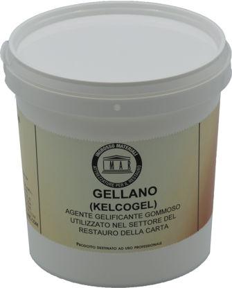 Immagine di Kelcogel (Gellano) in polvere
